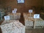 Palletts In Stock